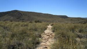 Weg im Park Cabo del Gata